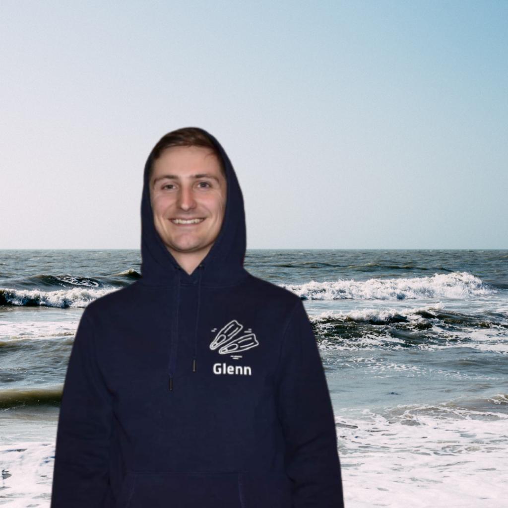 webshop hoodie
